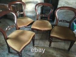 4 Victorian style balloon back dining chairs with ochre / gold upholstered seats